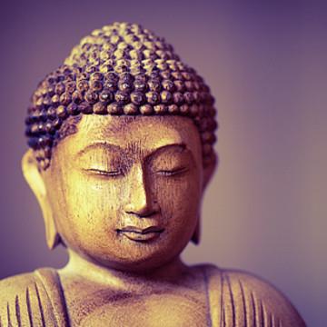 Spiritual I Yoga I Meditation I Collection