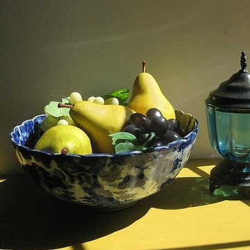 Still Life Studies Collection