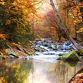 Streams and Rivers  - USA Collection