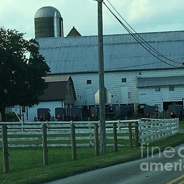 Sunday in Amish Country Collection