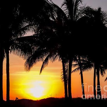 Sunrise Sunset Sunlight Sunrays  Reflection Collection