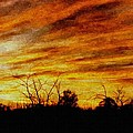 Sunset Painting Collection