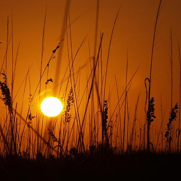 Sunset  Sunrise Collection