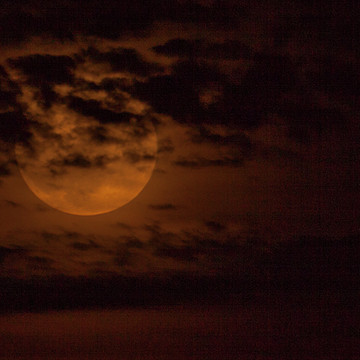 Supermoon over Lake Michigan  11-13-2016 Collection