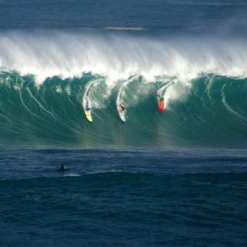 Surf Scene Hawaii Collection