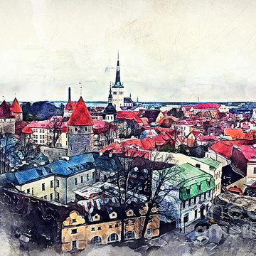 Tallinn Collection