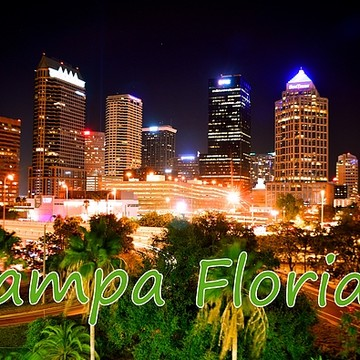 Tampa Florida Collection