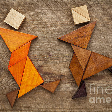 Tangram abstract figures Collection