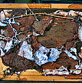 Termite Art 2008 Collection