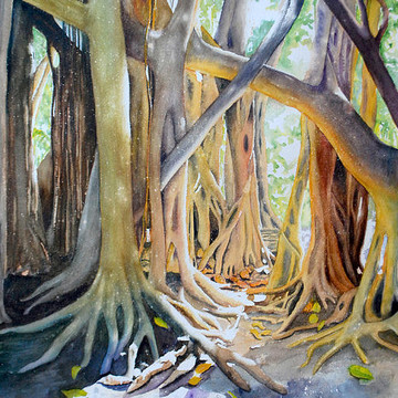 Terry Arroyo Mulrooney Trees Collection