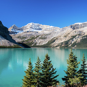 The Canadian Rockies Collection