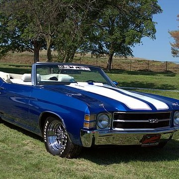 The Chevelle Collections Collection
