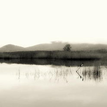 The Lake In Black And White Series Collection