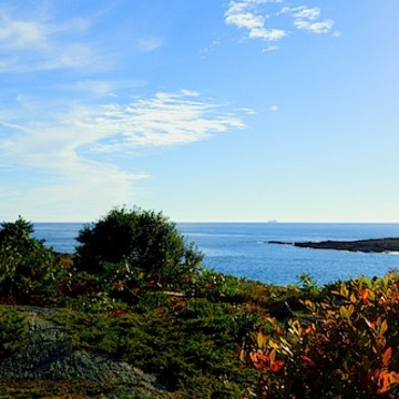 The Rockin Coast Of Maine
