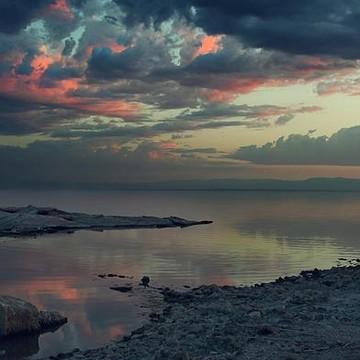 The Salton Sea Collection