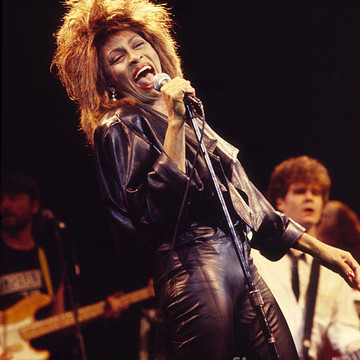 Tina Turner Collection
