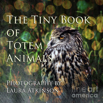 Totem Animals - Book One Collection
