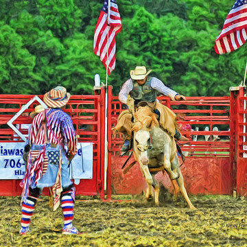 Towns County Rodeo Collection