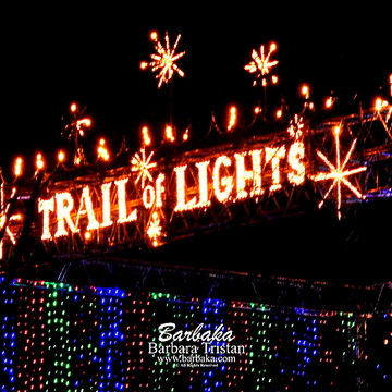 Trail of Lights Collection