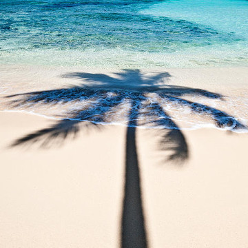 Tropical Images Collection