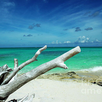 Turks and Caicos Islands Photography Collection