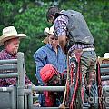 Typical Rodeo Images Collection