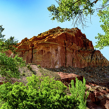 Utah National Parks Collection