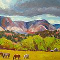 Utah Splendor Collection