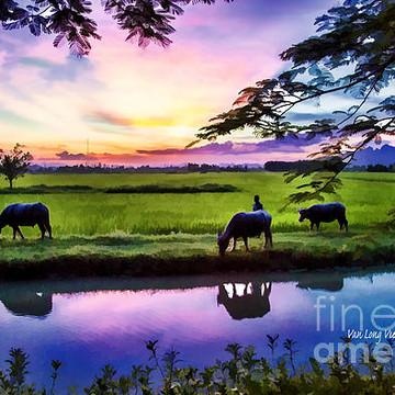 Van Long Nature Reserve Vietnam  Collection