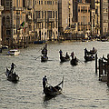 Venice Italy Collection