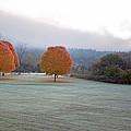 Vermont Autumn Collection