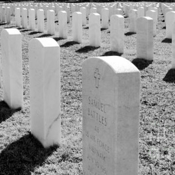 Veterans Cemetery  Collection