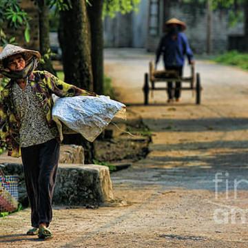 Vietnam 2016 Collection