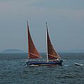 Vinalhaven Island Maine Collection