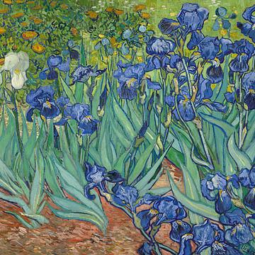 Vincent van Gogh Collection