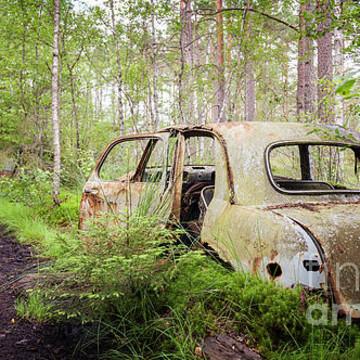 Vintage car graveyard Collection