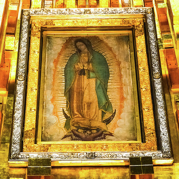 Virgen de Guadalupe Collection