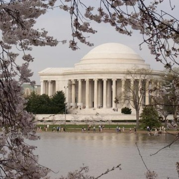 Washington DC in the Spring Time Collection