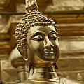 Wat Doisuthep Collection