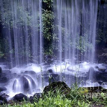 Water and Waterfalls Collection