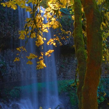 Water Falls Collection