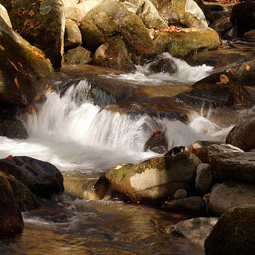 Waterfalls And Mountain Streams Collection