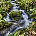 Waterfalls and Streams Collection