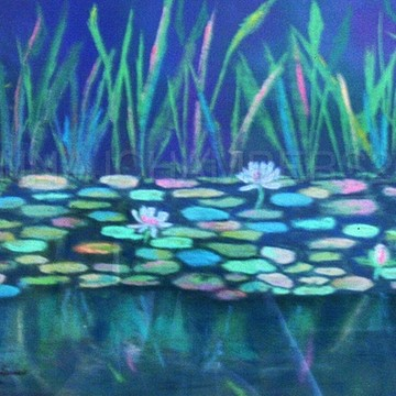 Waterlilies Collection