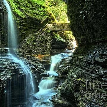 Watkins Glen State Park - New York Collection