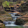 Watkins Glen State Park Collection