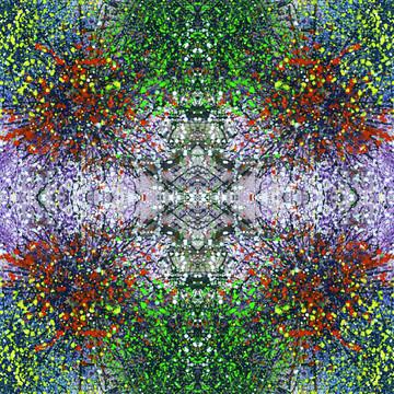 Wavelength Of Gratefulness Collection