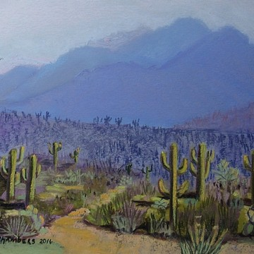 Western Landscapes Collection