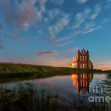 Whitby Abbey Collection
