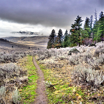 White Lake & White Lake Trail System Collection